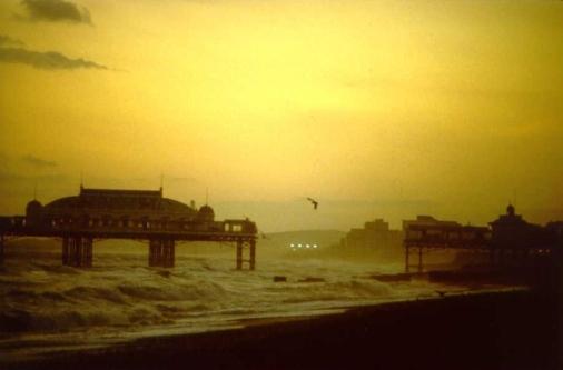 2 Brighton-Aziz Gokdemir