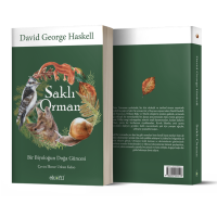 """Ekofil Yayıncılık'tan yeni kitap: """"Saklı Orman"""""""